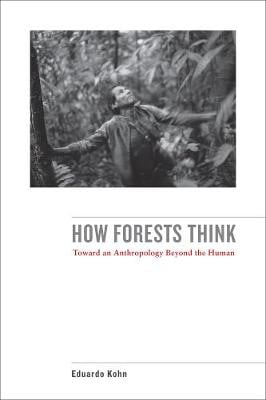 HOW FORESTS THINK 02