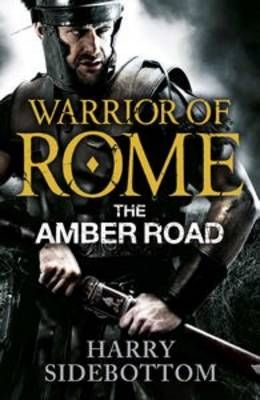 The Warrior of Rome VI: The Amber Road