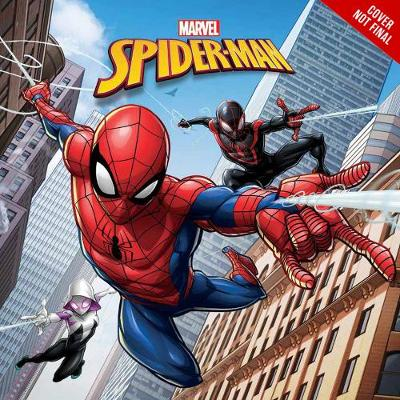 MARVELS SPIDER-MAN THE ULTIMATE SPIDER-