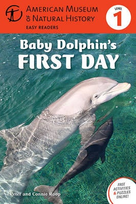 BABY DOLPHINS FIRST DAY