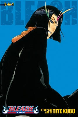 BLEACH: 3-IN-1 EDITION 13