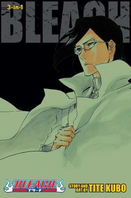 BLEACH (3-IN-1 ) VOL. 24