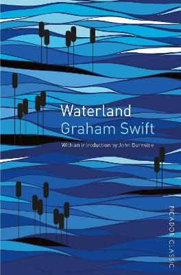 WATERLAND (PICADOR CLASSIC) B