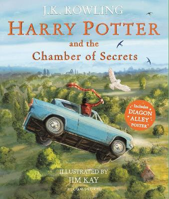 HARRY POTTER & CHAMBER OF SECRETS (ILLU)