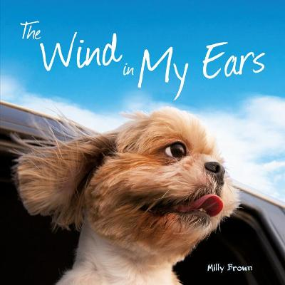 WIND IN MY EARS